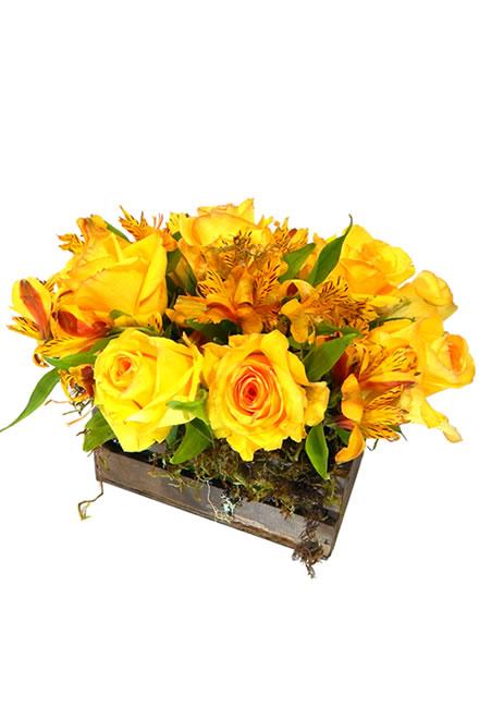 -flores_dia-da-mulher_caixote1-2_6